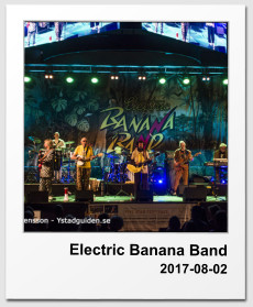Electric Banana Band 2017-08-02